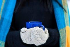 Härlig ung flickastående på vinterbakgrund En charmig ung dam som går i en attraktiv kvinna för vinterskog med koppen Royaltyfri Bild