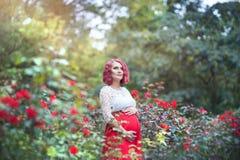 Härlig ung gravid kvinna som går i fältet av rosor Arkivbild