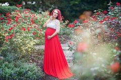 Härlig ung gravid kvinna som går i fältet av rosor Arkivfoto