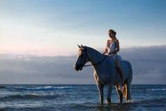 Härlig ung kvinna i den vita klänningen vid havet med hästen royaltyfri foto