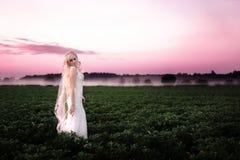 Härlig ung kvinna i en bröllopsklänning på en rosa gryning royaltyfri fotografi