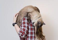Härlig ung kvinna med den hemmastadda gulliga katten Arkivbilder