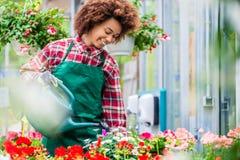 Härlig ung kvinna som bevattnar olika inlagda houseplants i A M. Arkivbilder