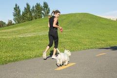 Härlig ung kvinna som joggar med hennes hund Royaltyfria Bilder