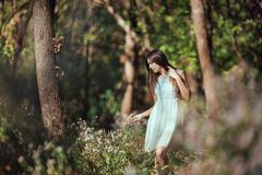 Härlig ung kvinna som kopplar av i blommamedow i skog arkivfoto