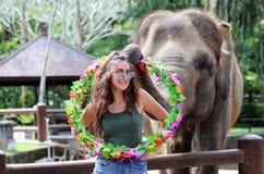 Härlig unik elefant med flickan på en elefantbeskyddreservation i Bali Indonesien arkivfoto