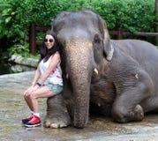 Härlig unik elefant med flickan på en elefantbeskyddreservation i Bali Indonesien royaltyfria foton