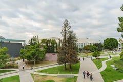 Härlig universitetsområde av den Pasadena stadshögskolan Arkivbild