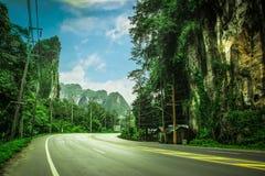 Härlig väg med det härliga berget Royaltyfri Foto