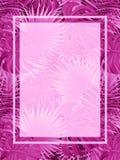 Härlig vändkretsvektorram exotisk vektoraffisch med stället för text tropisk bakgrund Djungelväxter och sidor royaltyfri illustrationer