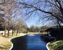 Härlig vår i Dallas Royaltyfri Bild