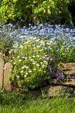 Härlig vårträdgård, skönhet i natur Fotografering för Bildbyråer