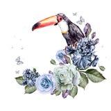 Härlig vattenfärgbakgrund med blommarosor och iriers Fågeltukan Royaltyfri Foto