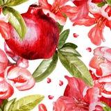 Härlig vattenfärgmodell med frukter och Fotografering för Bildbyråer
