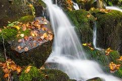 härlig vattenfall Royaltyfri Bild