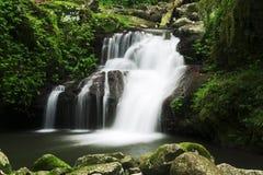 härlig vattenfall Arkivbild