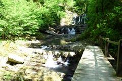 härlig vattenfall Royaltyfri Fotografi