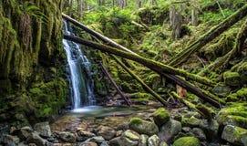 Härlig vattenfall British Columbia Arkivbilder