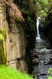 Härlig vattenfall i den lösa naturen Arkivfoto
