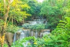 Härlig vattenfall i djup skog Arkivfoton