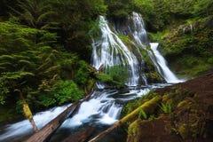 Härlig vattenfall i Douglas County i Uen S oregon tillstånd De långa exponeringsskotten två grader av vattennedgång och någon royaltyfri fotografi