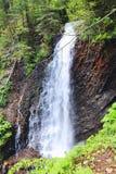 Härlig vattenfall i lös skog i grönskan Royaltyfri Foto
