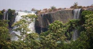 Härlig vattenfall i reserven av Vietnam stock video