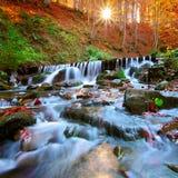 Härlig vattenfall i skog på solnedgången Arkivbild
