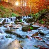Härlig vattenfall i skog på solnedgången Royaltyfria Foton