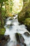 Härlig vattenfall i Thailand Royaltyfria Foton