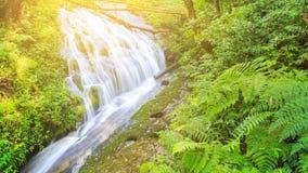 Härlig vattenfall i tropisk regnskog Fotografering för Bildbyråer