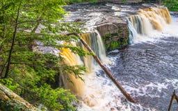 Härlig vattenfall på delstatsparken för ett piggsvinbergvildmark i övrehalvön av Michigan - slät stillsam flödande wate arkivfoto