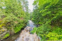 Härlig vattenfall på delstatsparken för ett piggsvinbergvildmark i övrehalvön av Michigan - slät stillsam flödande wate arkivbild