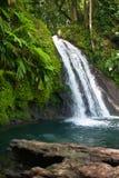 Härlig vattenfall på den Guadeloupe ön Royaltyfria Foton
