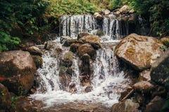 Härlig vattenfall på flodstenar i soliga trän flodflowin Fotografering för Bildbyråer