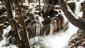 Härlig vattenfall som strömmar till och med nationalparken av Plitvice sjöar i Kroatien arkivbild