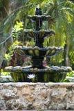 Härlig vattenspringbrunn i den Grand Cayman ön royaltyfria bilder