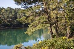 Härlig vibrerande landskapbild av gamla wi för sjö för villebråd för leragrop royaltyfria foton