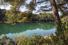 Härlig vibrerande landskapbild av gamla wi för sjö för villebråd för leragrop arkivfoto
