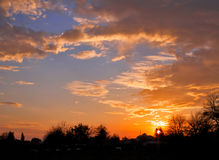Härlig vibrerande solnedgång, trädkonturer, fluffiga moln Royaltyfria Bilder