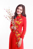 Härlig vietnamesisk kvinna med röd ao dai som rymmer den körsbärsröda blomningen Fotografering för Bildbyråer