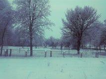 Härlig vinter Arkivbild
