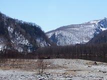 härlig vinter för kopieringsplatsavstånd Royaltyfri Foto