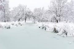 Härlig vinter fryst sjö Sofia, Bulgarien royaltyfria bilder