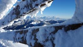 Härlig vinterlandscaoe i carpathians Arkivfoto