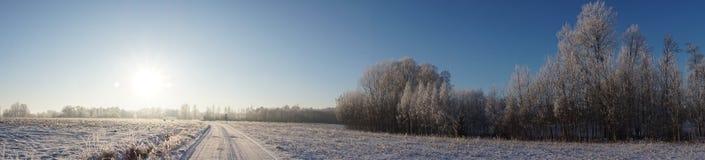 Härlig vinterlandskappanorama arkivfoton