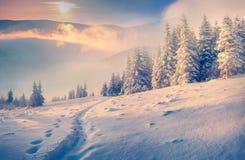 Härlig vintermorgon i berg Arkivfoton