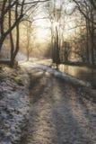 Härlig vintersnö täckte bygdlandskap av flodfloen Royaltyfri Fotografi