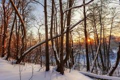 Härlig vintersolnedgång Arkivbild