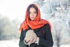 Härlig vinterstående av den unga kvinnan i Arkivbilder